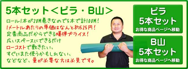 ピラ・B山5本セット